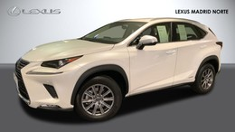 LEXUS NX  300h  300h Business. 386€/mes.