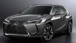 LEXUS UX 250h Business Navigation 2WD
