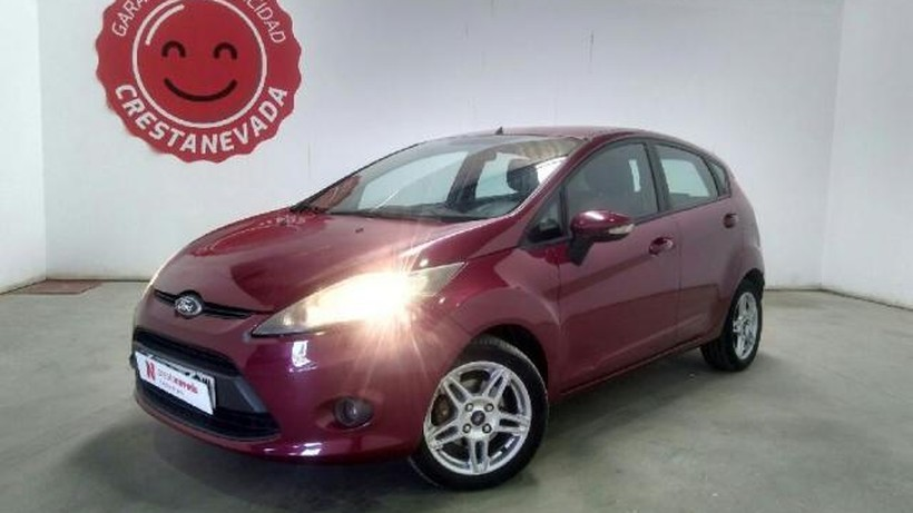 FORD Fiesta 5p Ambiente 1.40 TDCi