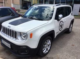 JEEP Renegade 1.6Mjt Limited 4x2