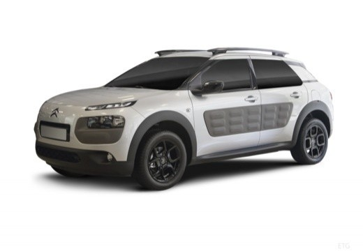 C4 Cactus 1.6 BlueHDi Shine Edition 100
