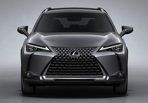 LEXUS UX 250h Business Navigation 4WD